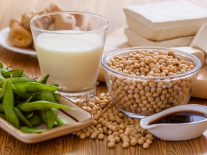 soy-products-tofu